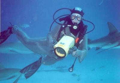 Shark Alley filming