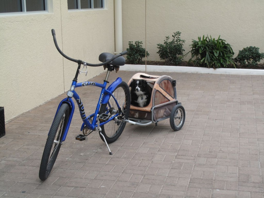 hund i cykel-trailer