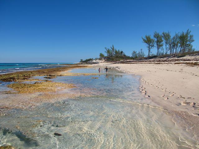 grund lagun