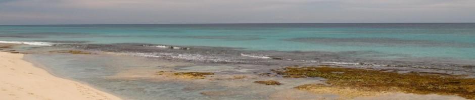 lagunen