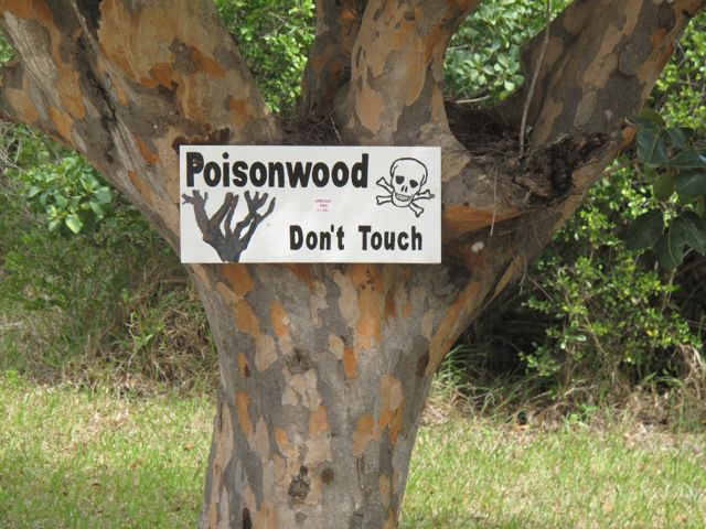 poison wood sign