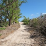 grandview beach walk