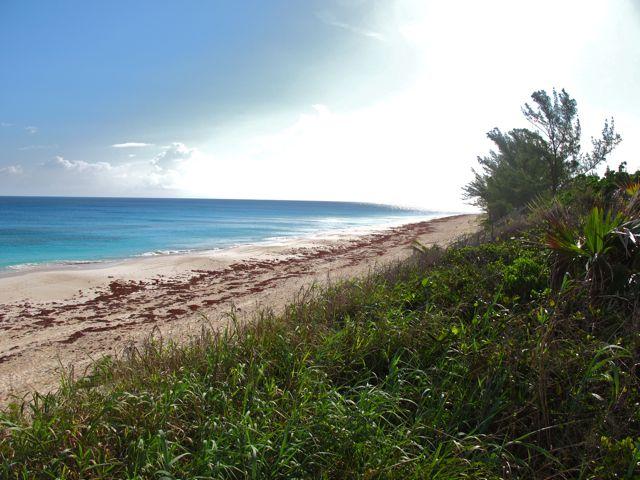 ocean frontiers strand