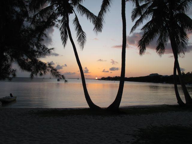 sunset Grabbers